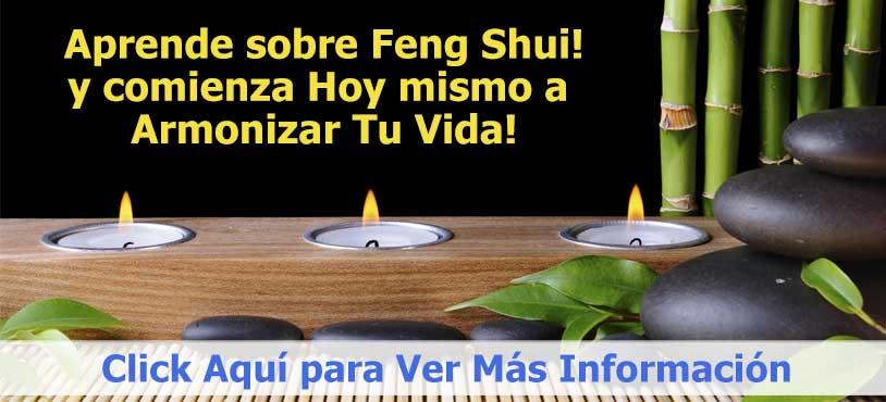Flor De Loto Feng Shui Ubicación Significado Y Uso