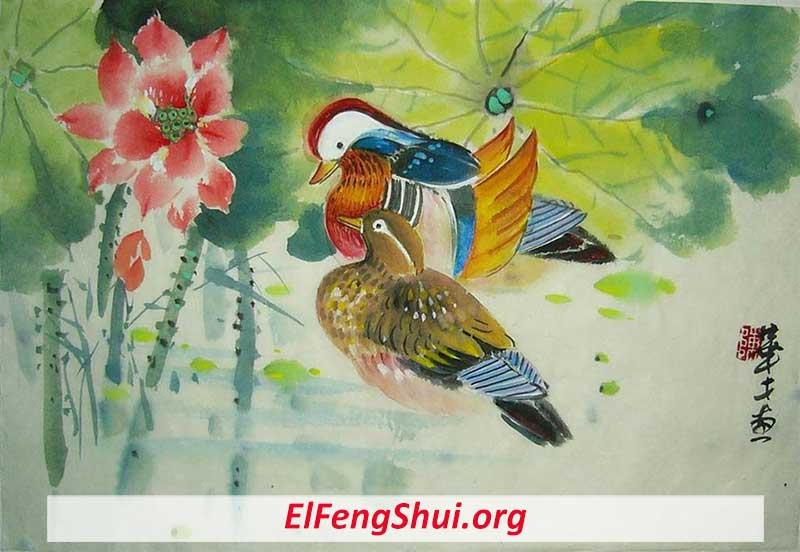 Patos Mandarines Feng Shui Mirándose