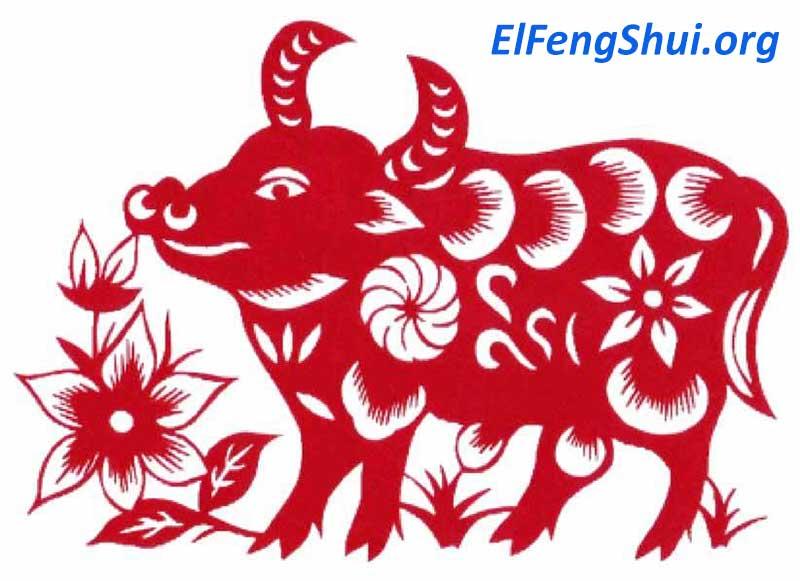 buey horoscopo chino