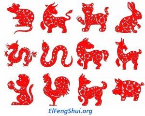 Predicciones Feng Shui para Animales Chinos en 2020