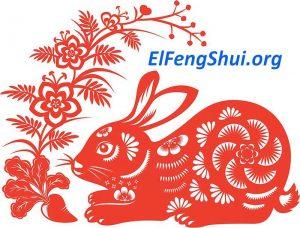 Predicción Anual 2020 Para el Conejo Chino (Como Será su Año)